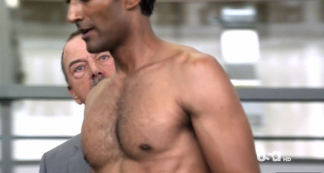 Ideal Nude Sendhil Ramamurthy HD